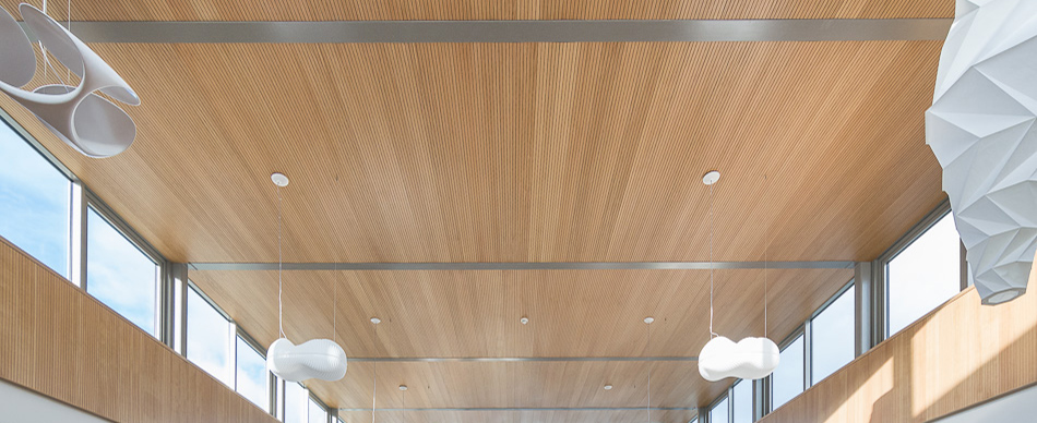 Timber Acoustic Ceiling